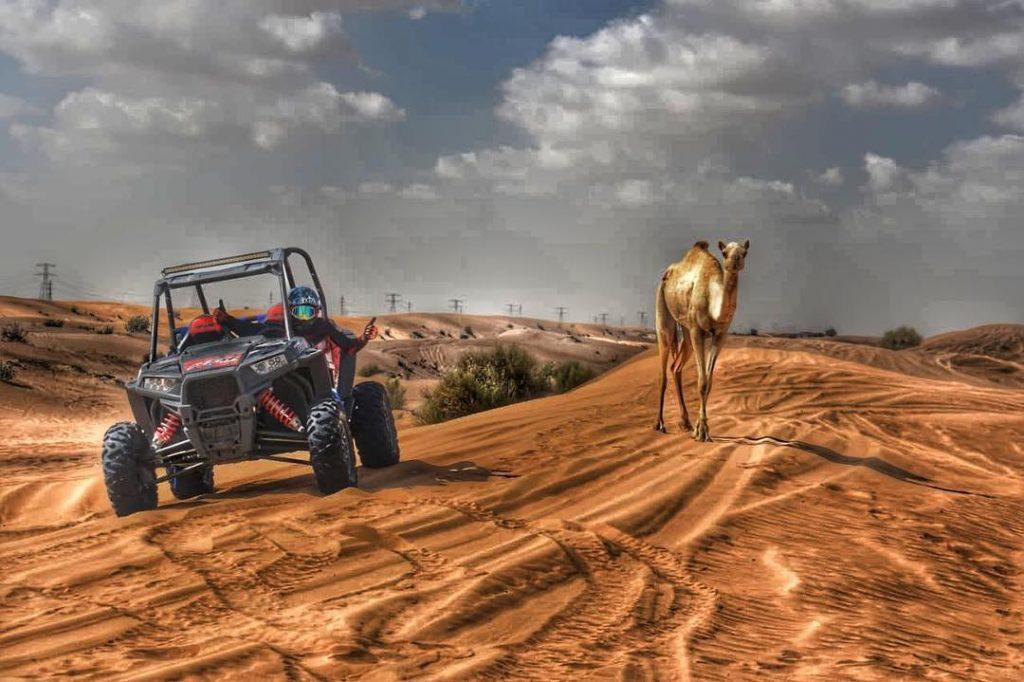 Buggy Rental Dubai